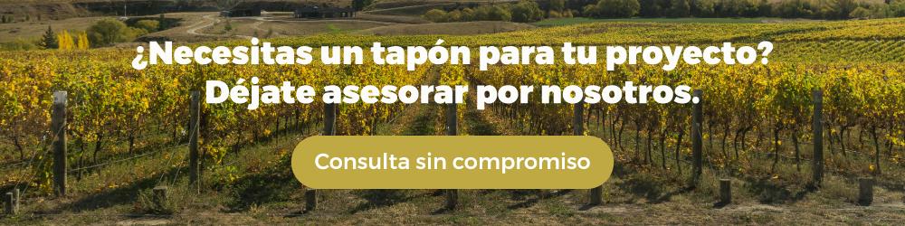 Imagen donde anima a consultar sin compromiso sobre nuestros servicios. Se visualiza un fondo de viñedos.